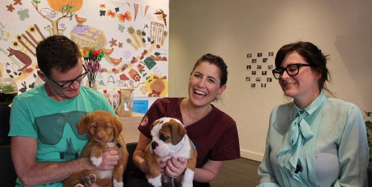 clients, staff and puppies