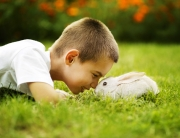 Boy with a Rabbit on the grass